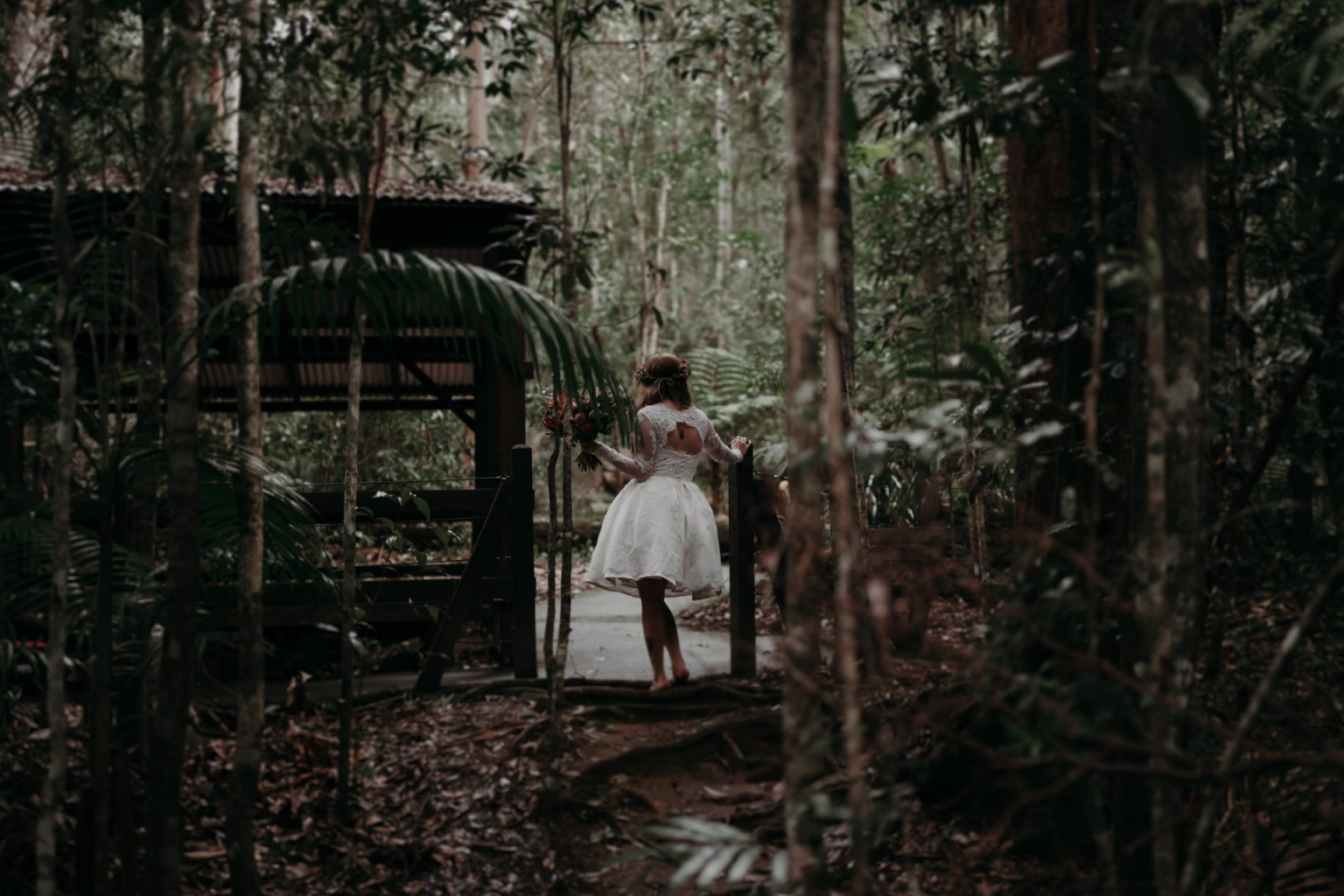 bride forest elopement cougal cascades currumbin